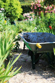 Wheelbarrow in garden — Stock Photo