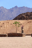 Giovane beduino — Foto Stock