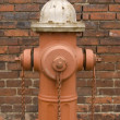 Hydrant Brick Closeup — Stock Photo #1937394