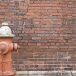 Hydrant Brick — Stock Photo #1937396
