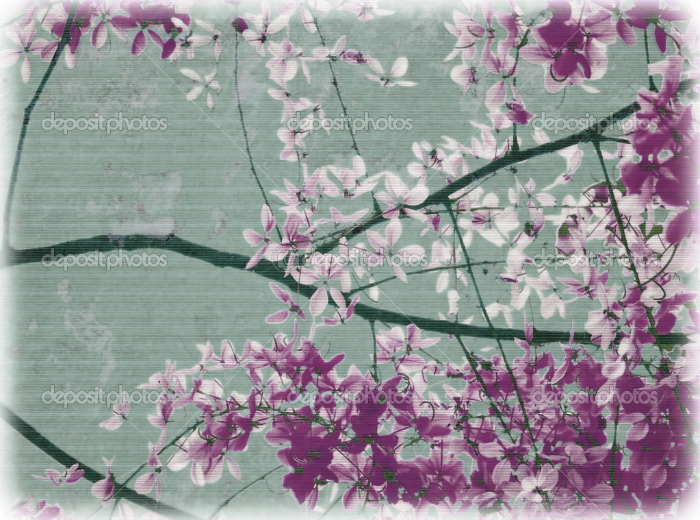 Purple and white flowers on aqua textured background — Stock Photo #2051888