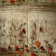 Stock Photo: Red buds on grunge wood background