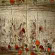 Red buds on grunge wood background — Stock Photo #2185910