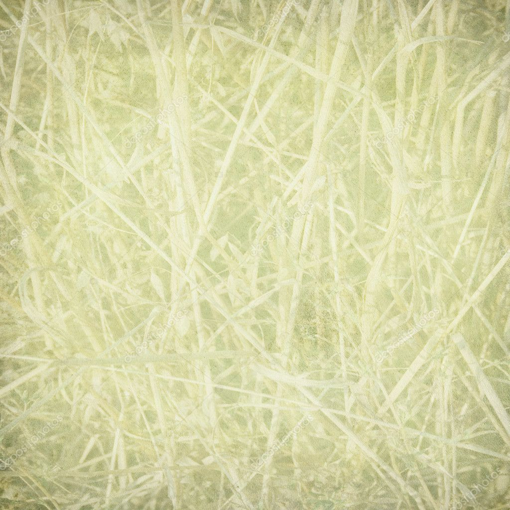 Pale straw print on paper textured background — Stock Photo #2227962