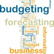 Budgeting wordcloud — Stock fotografie #2078640