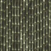 Bamboo plants wallpaper — Stock Photo