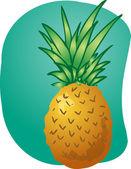 Pineapple fruit illustration — Stock Photo