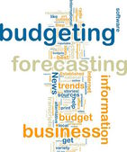 Budgeting wordcloud — Stock Photo