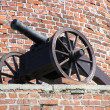 Cannon — Stock Photo #1941216