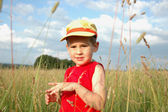 Boy in the grass — Stock Photo