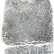 Stock Photo: Fingerprint