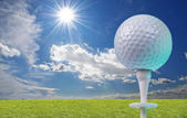 Golf ball on a tee with grass — Stock Photo