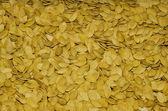 Pumpkin seeds — Stock Photo