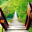 Stock Photo: Old wooden bridge