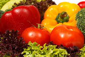 Fresh vegetables closeup — Stock Photo