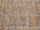 Straw texture wallpaper. — Stock Photo