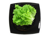 Leaf of lettuce on black plate . Isolated over white — Stock Photo