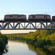 Train on the bridge — Stock Photo