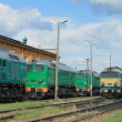 Trains in depot — Stock Photo #1888420
