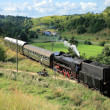 Stock Photo: Landscape with a steam train