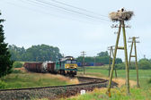 Rural landscape with freight train — Stock Photo