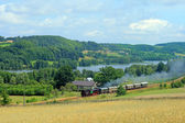 レトロな蒸気機関車、湖畔を渡す — ストック写真