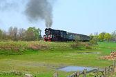 Paesaggio rurale con treno a vapore — Foto Stock