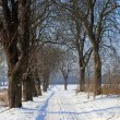Winter scene — Stockfoto #1890403