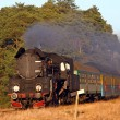 Old retro steam train - Foto de Stock