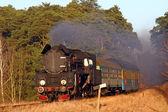 Antigo trem a vapor retrô — Fotografia Stock