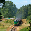 Freight train entering the forest - Stock Photo