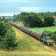 Freight diesel train - Foto de Stock