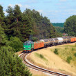 Stock Photo: Freight train passing the forest