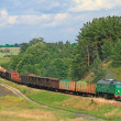 Summer landscape with the freight train — Stock Photo
