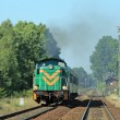 Passenger train passing through countrys - Стоковая фотография