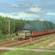 Freight train passing the forest — Stock Photo