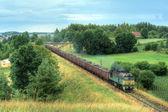 Freight diesel train — Stock Photo
