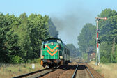 Train de voyageurs passant par countrys — Photo