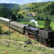 Landscape with a steam train — Stock Photo #1966196