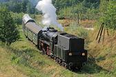 Retro steam train — Stock Photo