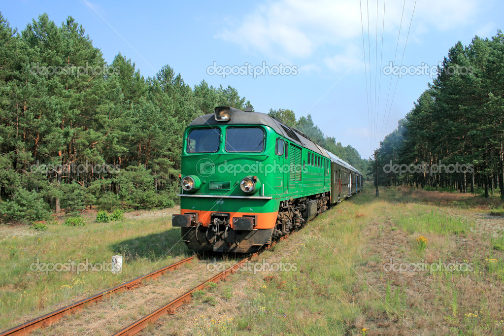 Passenger train passing through the forest — Stock Photo #1966296