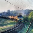 Freight diesel train — Stock fotografie #1971196