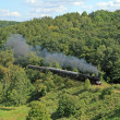Landscape with a steam train — Stock Photo #1973883