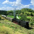 Landscape with a steam train — Stock Photo #1975060