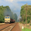 Freight train passing forest — Stok Fotoğraf #1977529