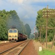 Stockfoto: Freight train passing forest