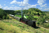 Landscape with a steam train — Foto Stock