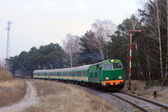 Passenger train passing through forest — Stock Photo