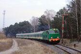 Treno passeggeri passando attraverso la foresta — Foto Stock
