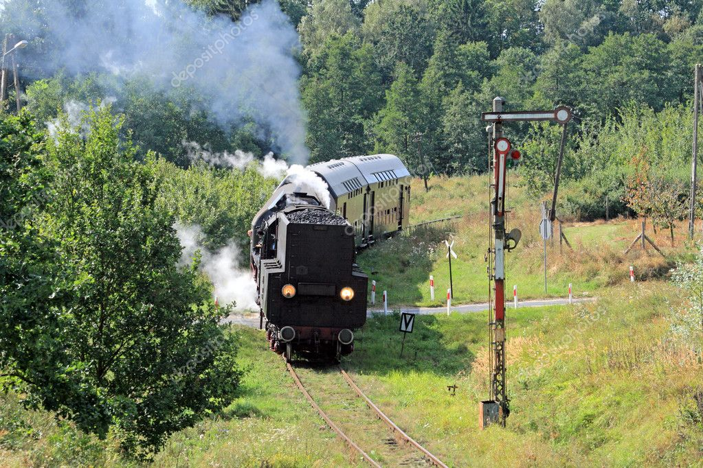 Old retro steam train passing through polish countryside — Stock Photo #1973850